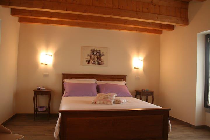 Camera Family con letto matrimoniale e un letto singolo con la possibilità di avere un altro letto,dotata di bagno con doccia.