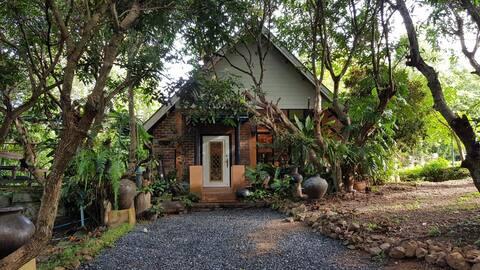 Long stay at  Natural home at DOI SA-KET,Chiangmai