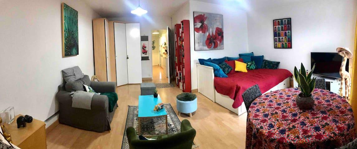 Studio très spacieux en plein coeur de Paris