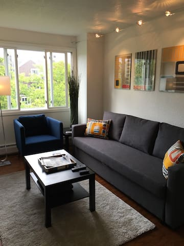 Bright, cozy living room with new furnishings, sleeper sofa and track lighting