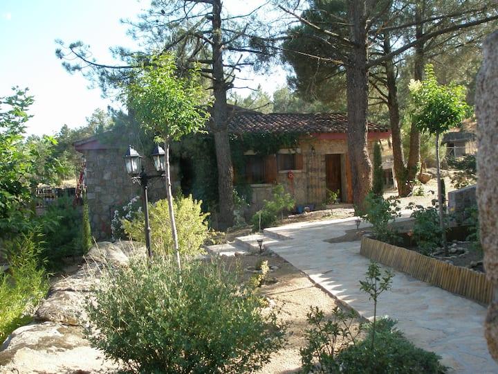 Habitación La Pililla, en plena naturaleza