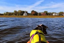 Bring the whole family - even the four-legged kids - kayaking among the marshes of Boston's North Shore - Plum Island, Ipswich River, or ...
