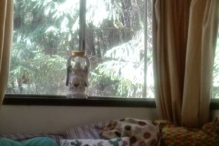 Private Bedroom: Vibrant Rustic Redwood Bohemian