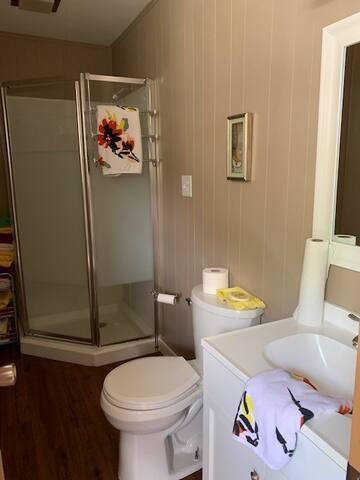 Bathroom /shower