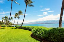 View of the lawn and ocean just off our lanai.  The small break in the hedge leads to a little, rarely used beach.  In the distance is a beautiful view of Haleakala (Maui's dormant volcano).