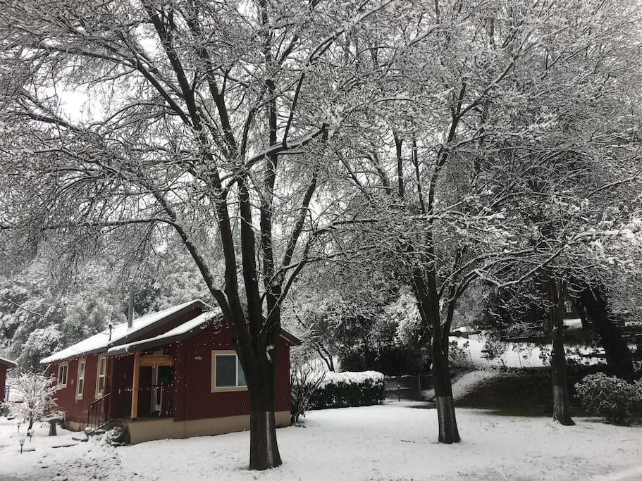 The Little Red House winter 2017