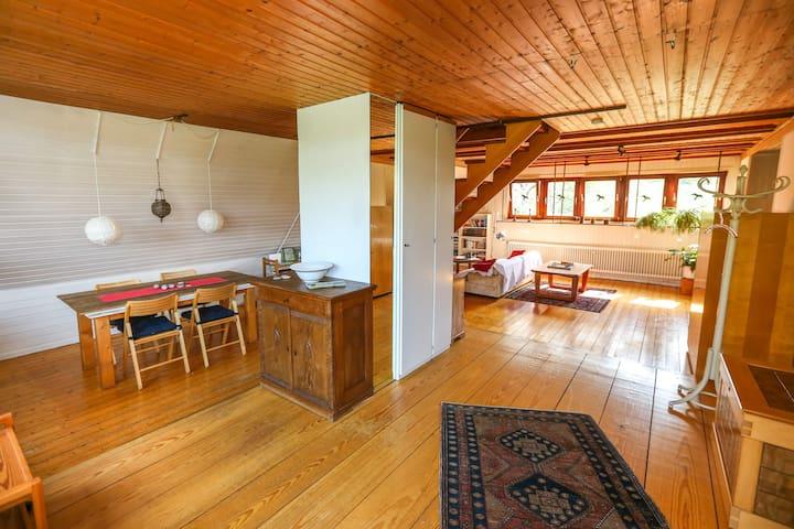 Möblierte Loft Wohnung  79qm-Pendler & Messen