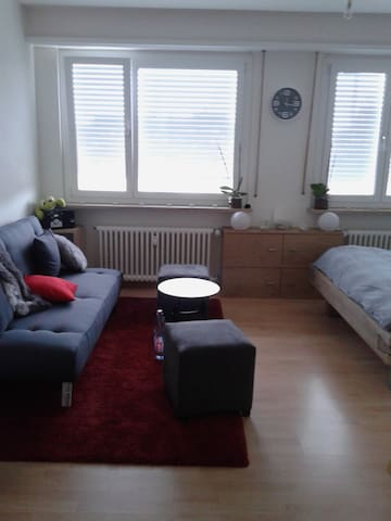 Flat near Messe, Musical, Heart of Kleinbasel - Basileia