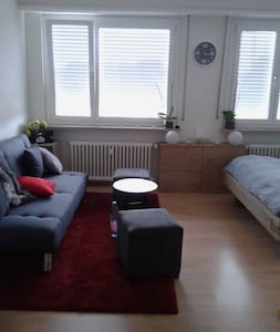 Flat near Messe, Musical, Heart of Kleinbasel - Basel - Lejlighed