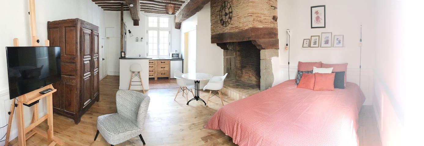 Studio de charme Rennes centre - Place St Anne