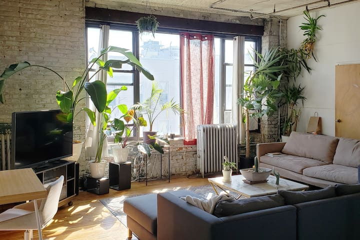 Great room in the heart of Williamsburg