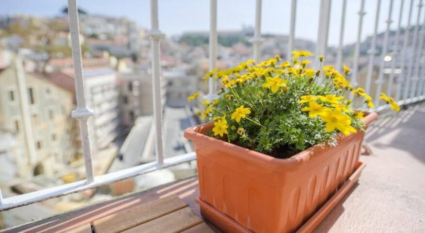 Comfy Estudio em Bairo Alto! - Lisboa - Appartamento