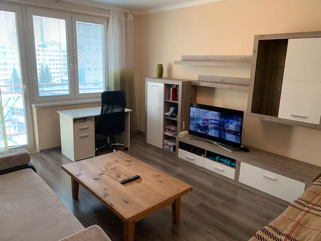 Viktor's Apartments-Luxury Flat in the City Centre