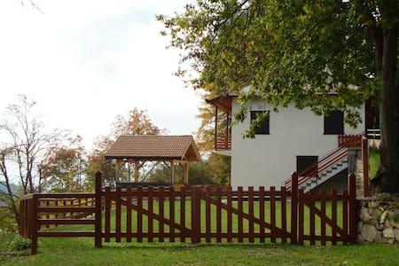 Appartamento Panarotta vista giardino