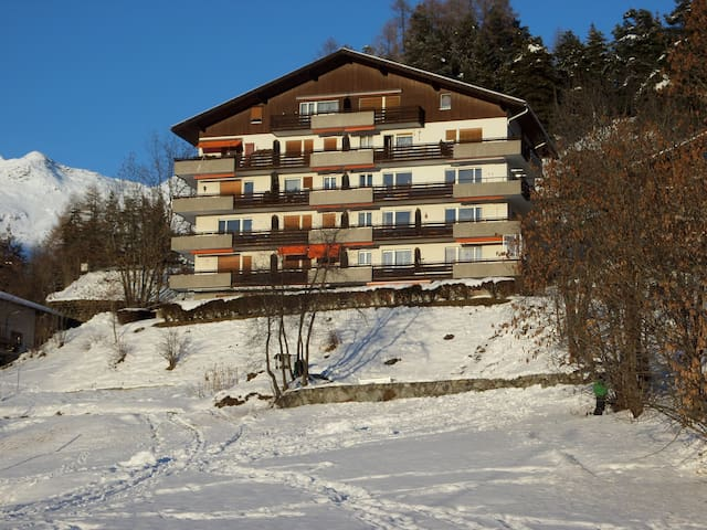 Fantastic 5 room apartment (1-8 p) - Fiesch - Pis