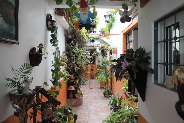 Casa con hermoso jardín en el centro de Tula