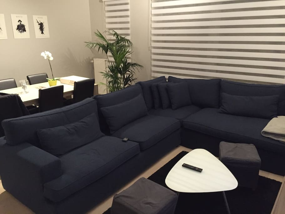 Picture of the couch.  The couch is in L shape, so 2 people can sleep on it if needed
