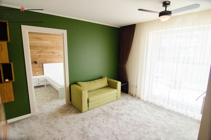 Cozy one bedroom apartment near Old town