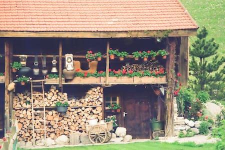 La Suisse typique, Heidiland. Chalet d'exception. - Haut-Intyamon - Alpstuga