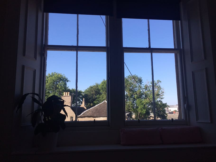 View through the living room windows.