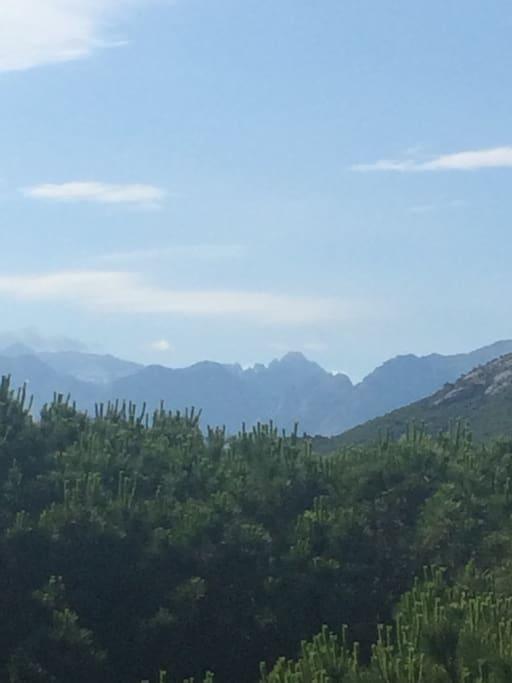 Monte Cintu, le toit de la Corse, droit devant vous , vu de la terrasse