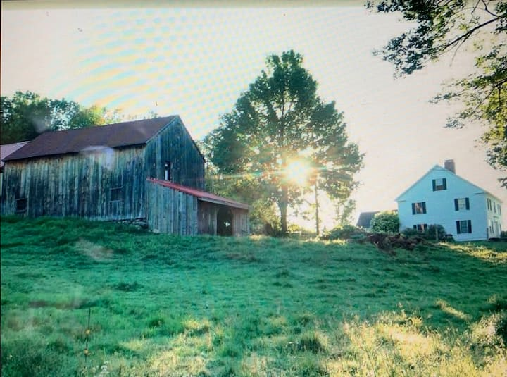 1802 Saddle Hill Farm: 100 acres, Great Getaway!