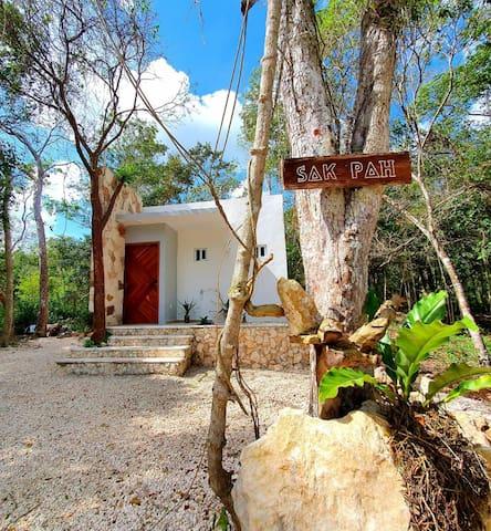 Sak-Pah Selva Maya
