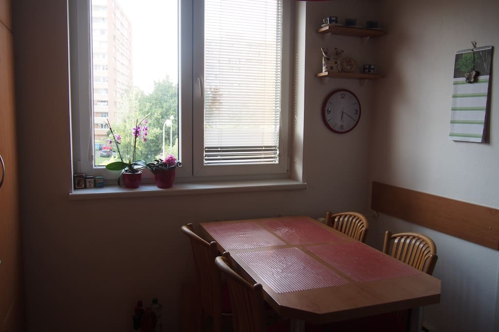 Fully equipped kitchen. Coffee, tea and a basic breakfast (yoghurt, oatmeal, fruit, milk, eggs, butter, jam, bread) is available.