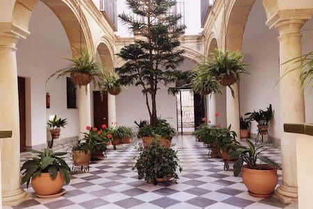Apartamento Centro Casa Palacio-Parking-Wifi-A/A