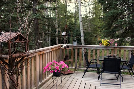 The Crooked Cabin in West Bragg Creek