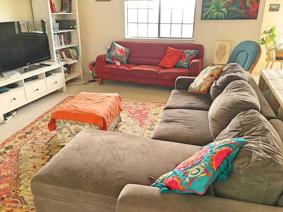 Living Area with our two couches
