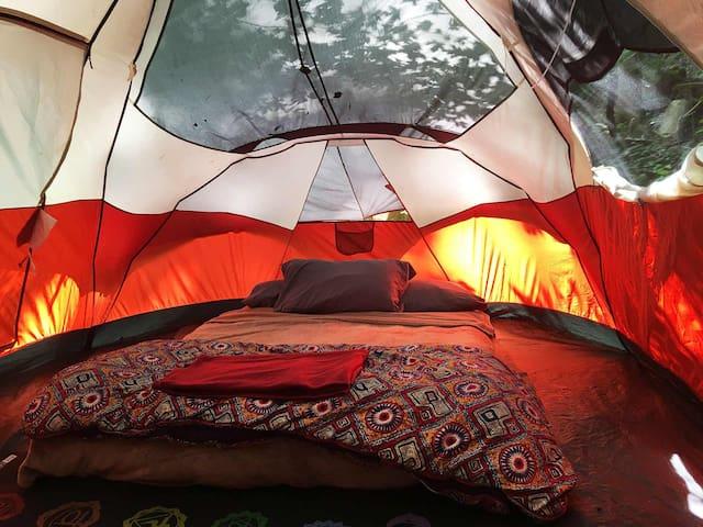 Campsite & Fire