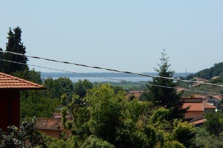Beautiful Villa in Versilia! - Massarosa
