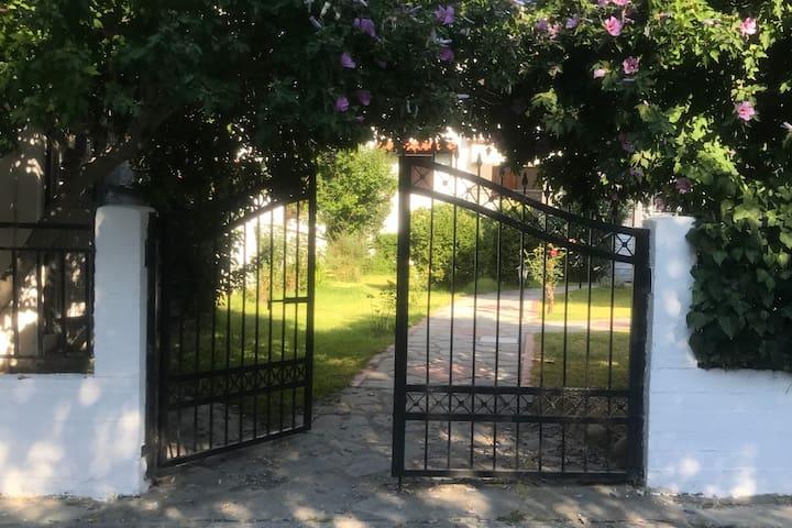 Lena's Garden Polichrono 2