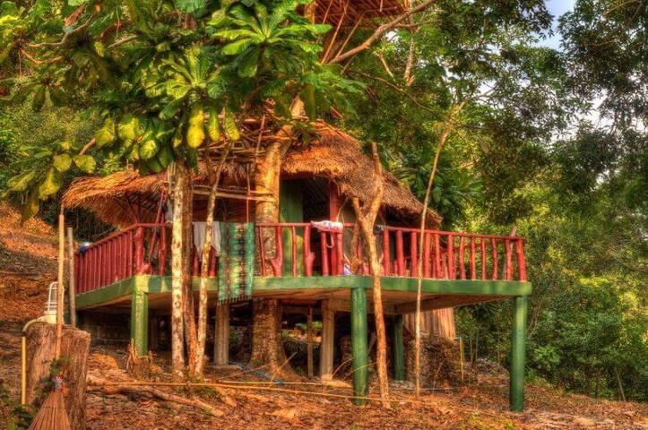 TREE HOUSE MOTHER EARTH GARDEN BIG TERRACE