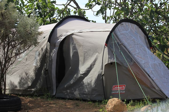 Tent in  BaseCamp! Enjoy our climbing connection!
