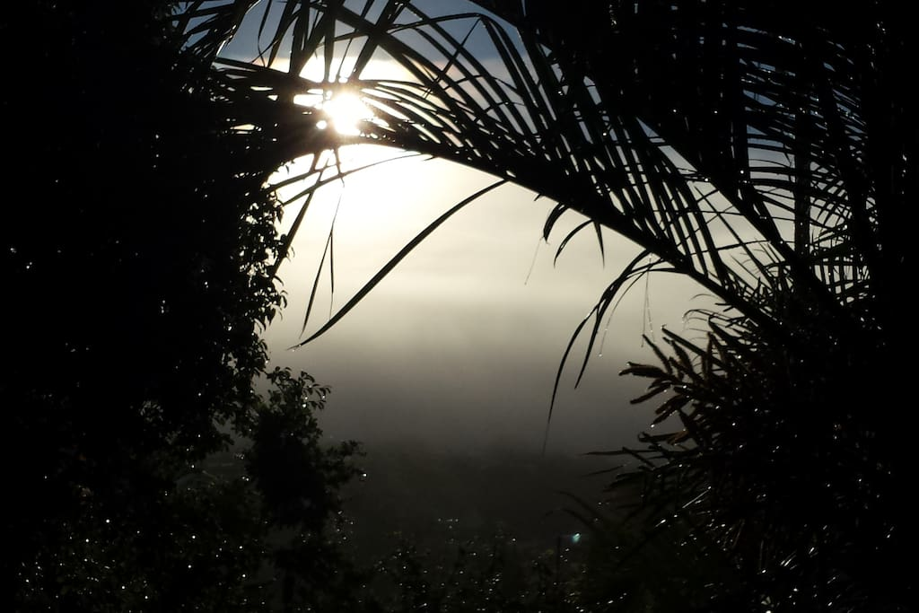 Fog over Nambour Valley at Dawn