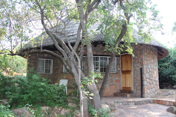 Limerick Lodge, Hillside, Bulawayo - Bulawayo - Bed & Breakfast