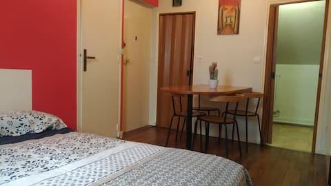 Bel appartement proche CDG / ASTERIX / PARIS