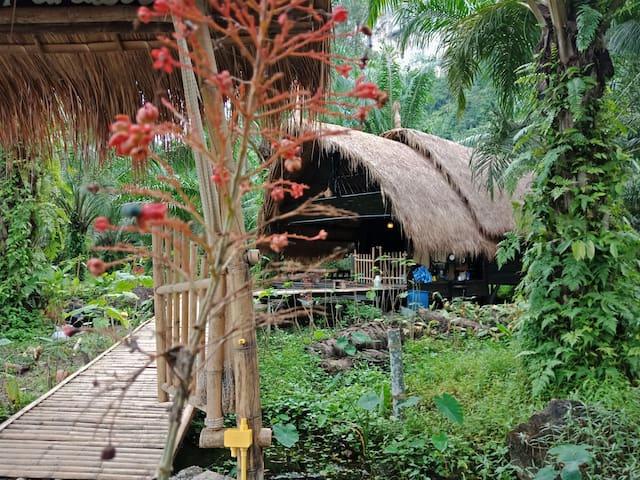AOLUEK PARADISE. TONPRAO