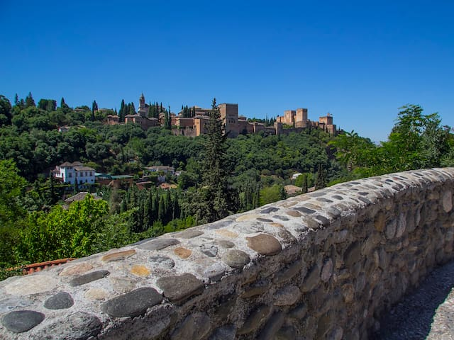 Alhambra Secret - luxury apartment in Granada. - Granada - Apartment