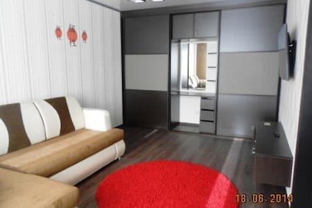 Стильная, комфортная квартира для двоих - バルナウル (Barnaul)