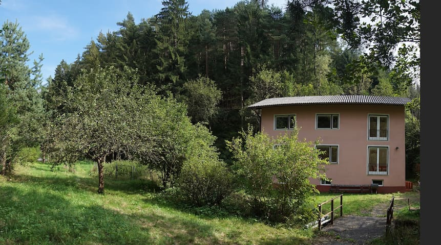 Forest Air Retreat with a Little River - Edlitz - Guesthouse