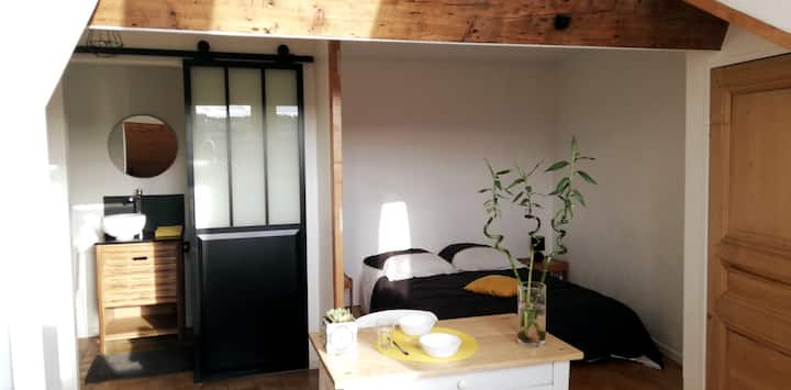 Studio avec vue, au calme en plein cœur de Lyon