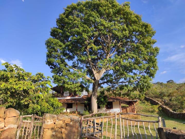 Casa Ceiba de Mirabel-Barichara
