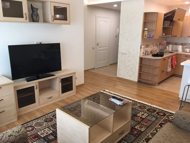 Fully equipped,furnished cozy flat Vilnius Center