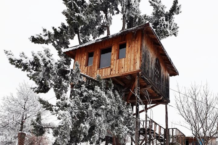 Çalkara Köyü Ağaç Ev