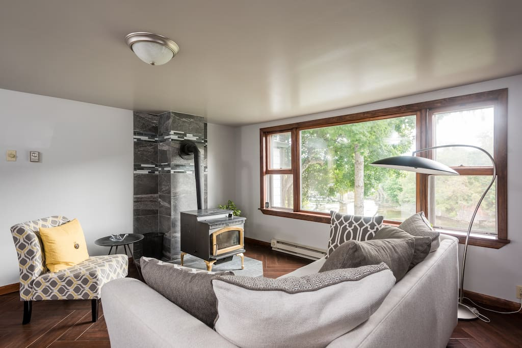 Living room with cozy pellet stove