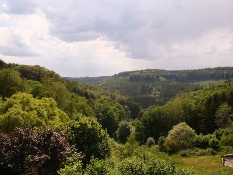 Appartement,duplex, grande terrasse Vosges du Nord