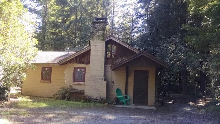 Quiet Beautiful Mendocino Cabin